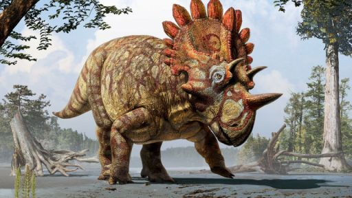 New 'Hellboy' Dinosaur with Unique Horns Identified – Secrets in the News: May 30 – June 5, 2015