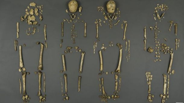 The remains of the Jamestown leaders (James Di Loreto/Smithsonian Institution)