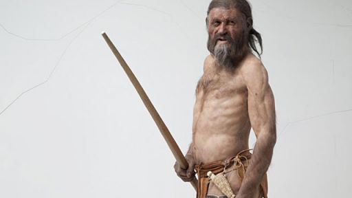 Ötzi the Iceman Had a Stomach Bug – Secrets in the News: January 2 – 8, 2016