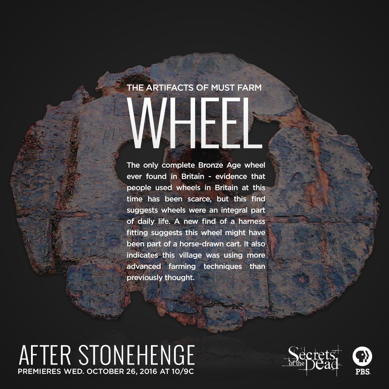 Secrets-AfterStonehenge-Wheel