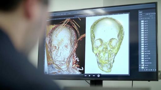 The Woman in the Iron Coffin -- Forensic reconstruction reveals a face from history