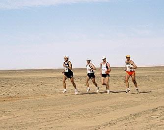Arid Desert