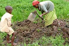 Woman tends fields with young son.