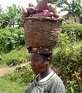 Woman with basket of yams.